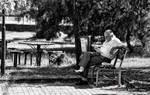 Park in keyif
