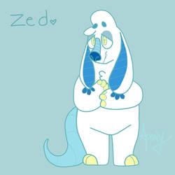 Zeddy Boy
