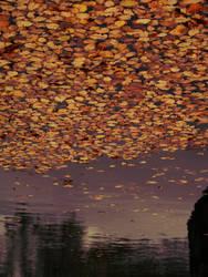 Floating by tecnophreak
