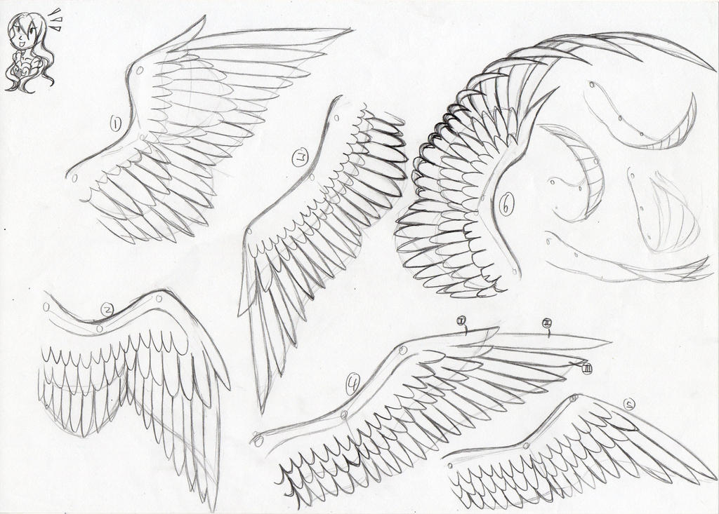 How to - Drawing Wings
