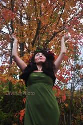 Beauty-fall I by elyvirlan