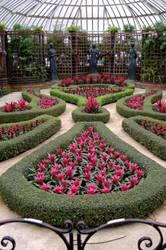 Pink Maze by Professor-Kirby