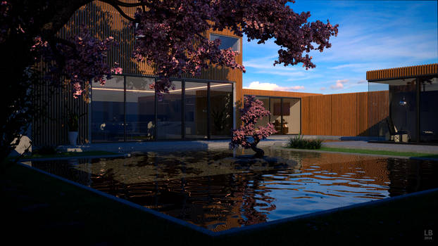Modern House with pond at daylight