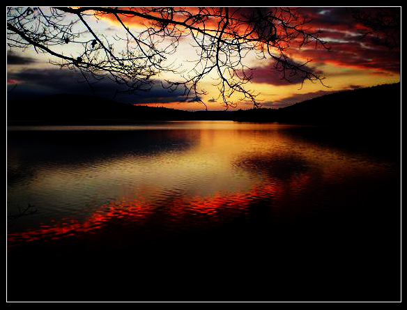 Within Peace by sakuranovo