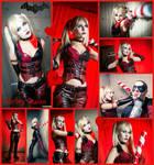 Arkham City Harley Collage