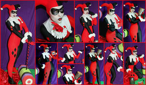 Harley Quinn Animated Series Cosplay Collage