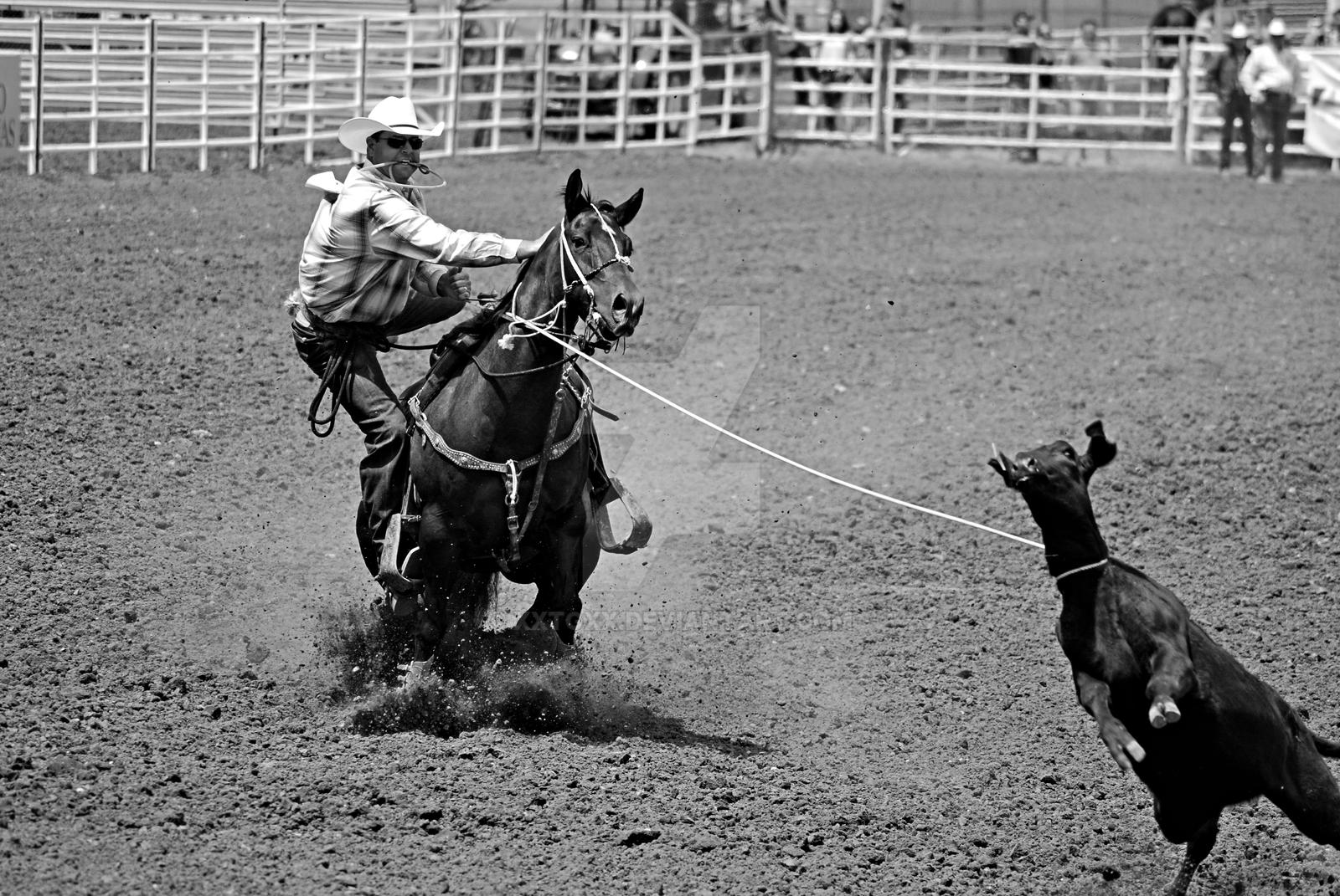 Rodeo by xxtgxx