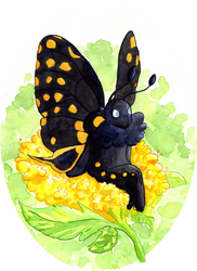 Butterfly and Flower by Lorenith