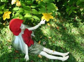 Coquelicot Garden II