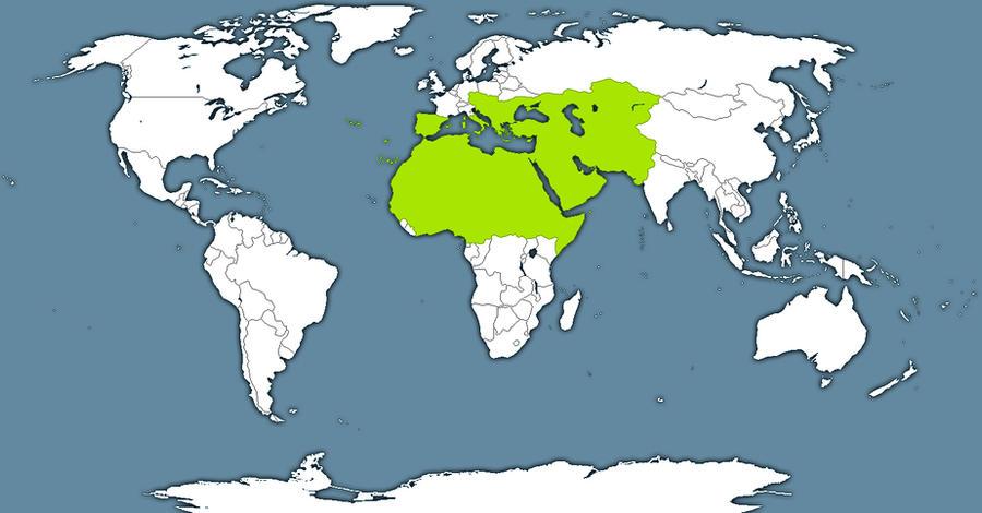 Greater Ottoman Empire