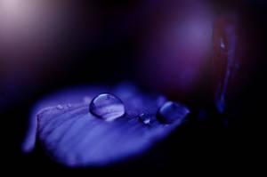 Water drop by Fialu