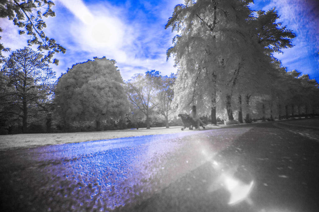 Learning Infrared Photography by TMProjection