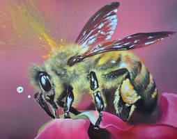 jolly bee