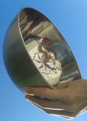 Mirror bowl by Matbox99