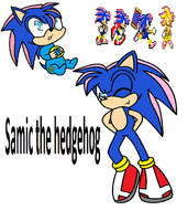 Samic the hedgehog by Miiv12