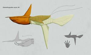 Deinarthrognatha acuta by Sanrou