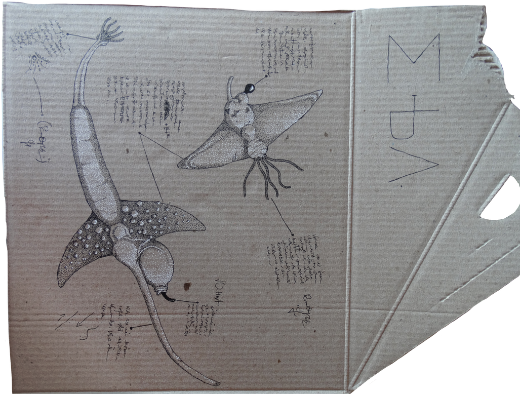 (Des)Naturalismo impresso - 03 by Sanrou
