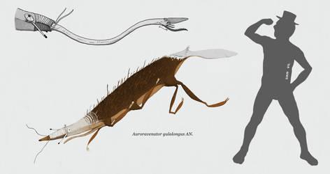 Auroravenator gulalongus by Sanrou