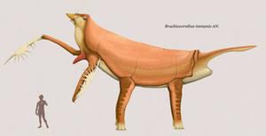 Brachicornibus immanis