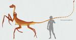 Dracocentaurus alepidis