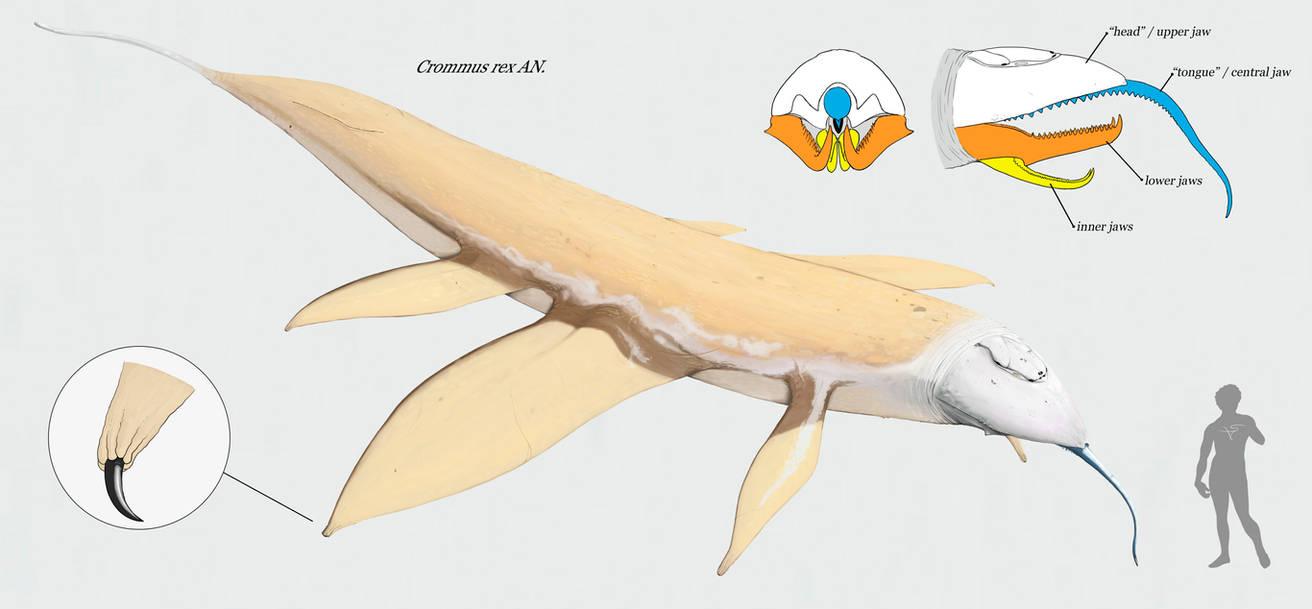 Crommus rex by Sanrou