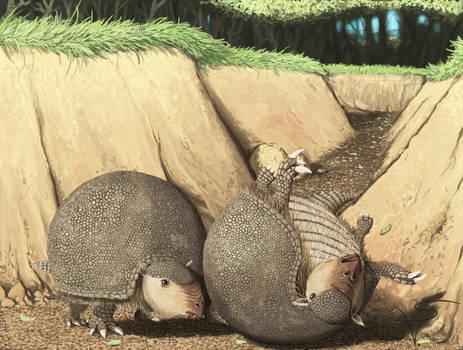 Glyptodon clavipes