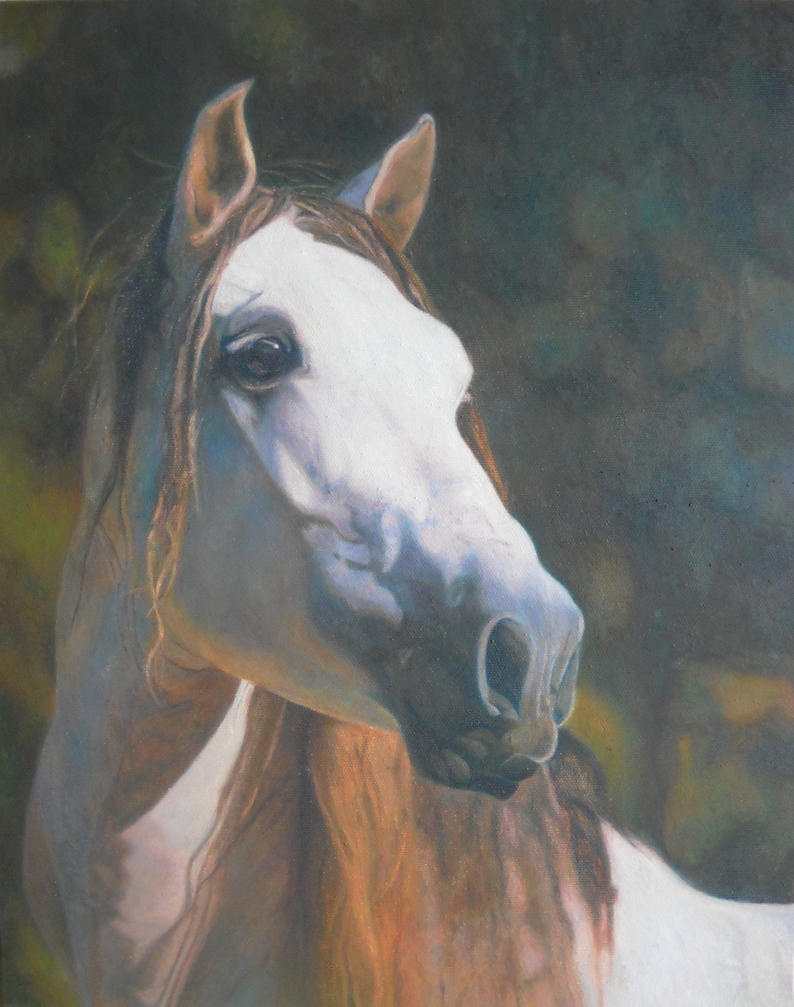 portrait stallion by anna36