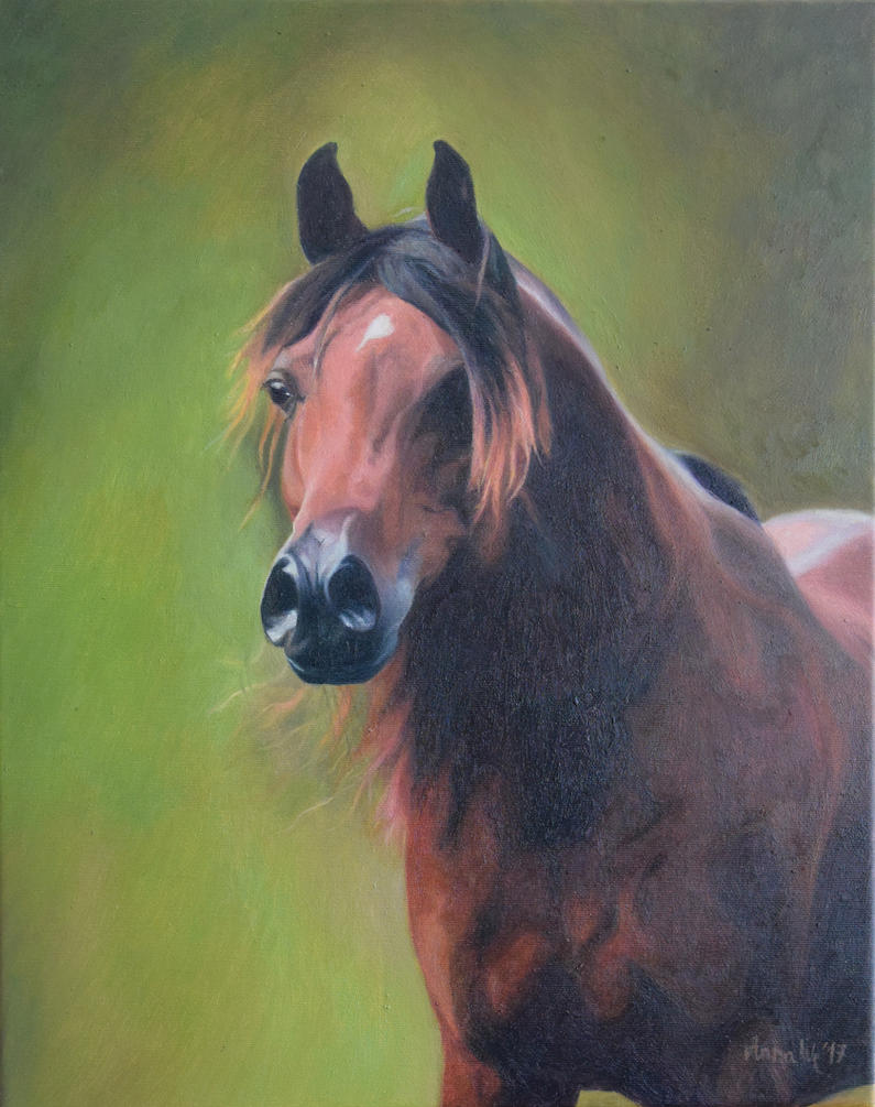 Portrait Arabian 4 by anna36