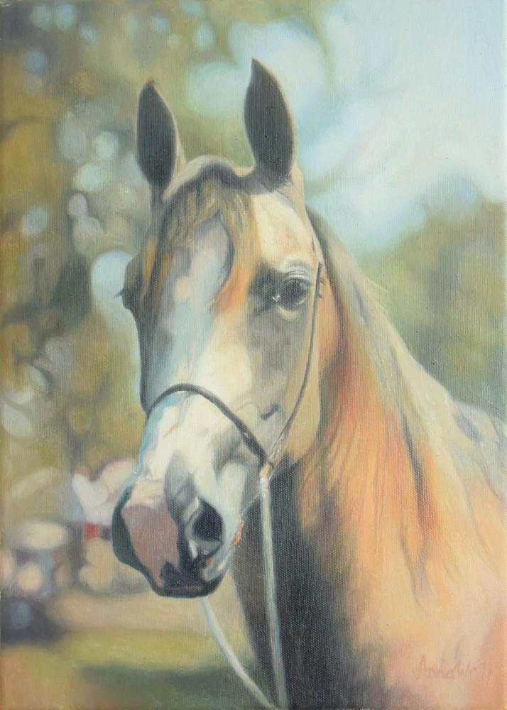portrait stallion 2 by anna36
