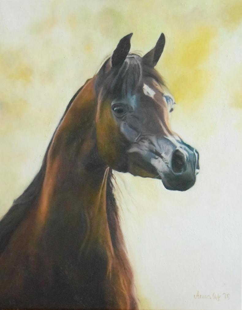 Portrait Arabian 5 by anna36