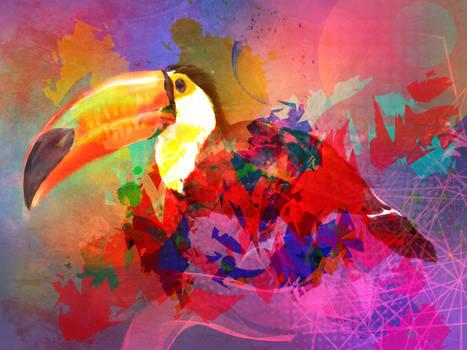 Feeling like a toucan