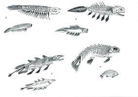 Gossipiboman Fish Bones by PousazPower