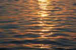 ~ Golden Light ~ by ainessa
