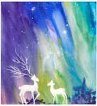 ~ Wonderful lights ~ by ainessa
