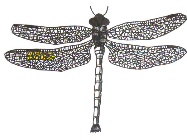 dragonfly - dragonfly tattoo