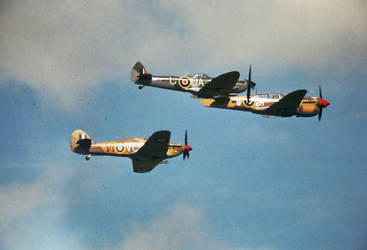 Classic Tight Formation by UPLANDS