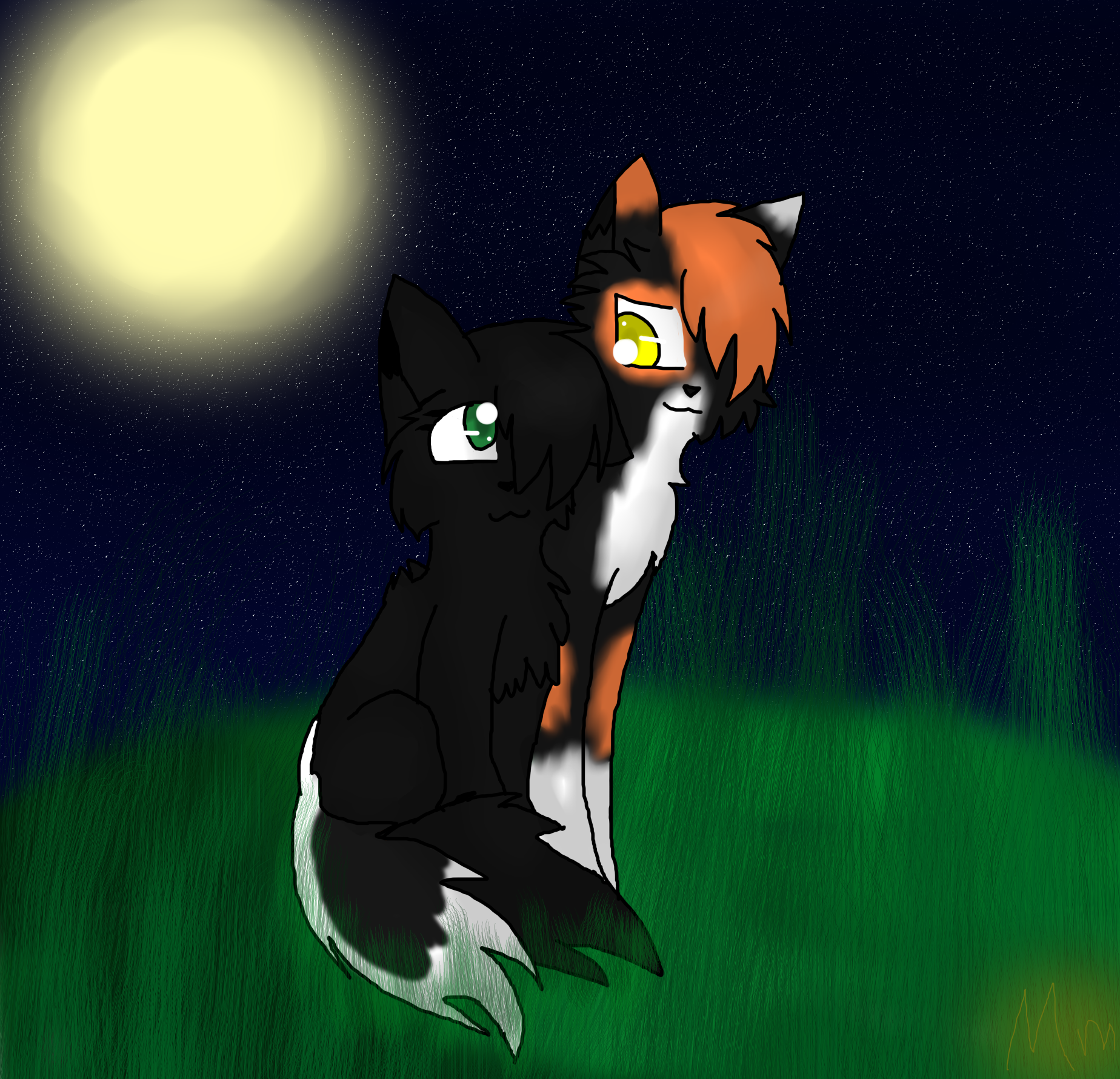 Hollyleaf And Sol By Mega Icarus