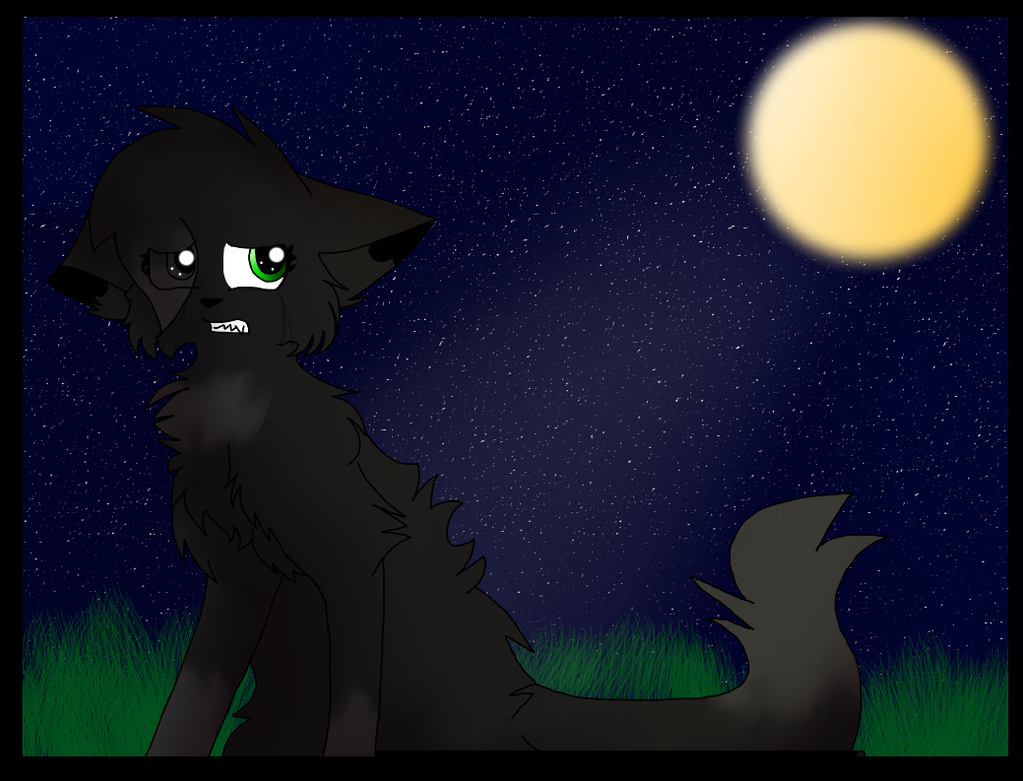 Warrior Cats Hollyleaf And Breezepelt Fanfiction Nightcloud s Heartbreak
