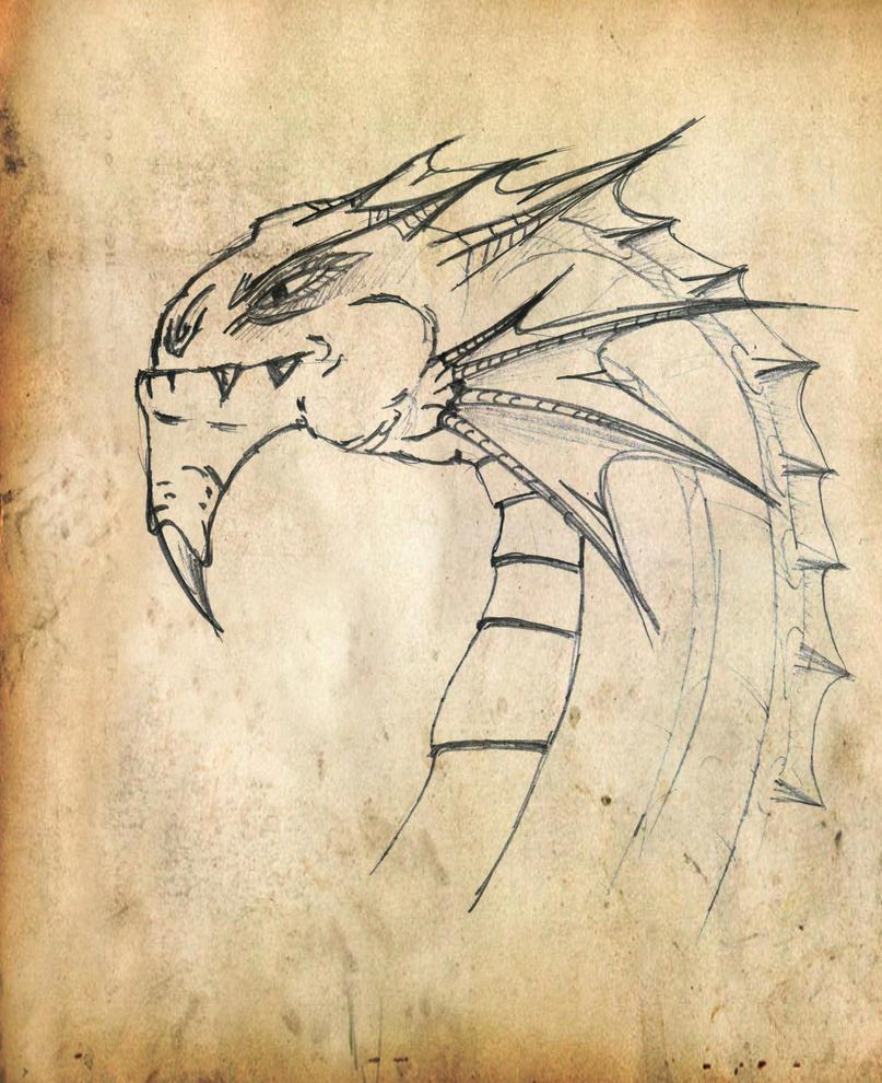 simple dragon by zenits on deviantART