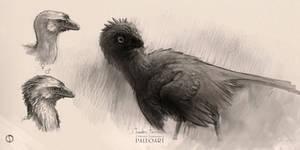 Sketch Troodon Formosus