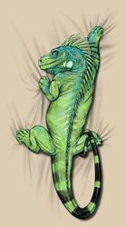 Iguana Hangin' by KylerSharp