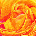 Rose drawing - Pigment Markers by GeeMassamArt