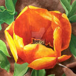 Orange Tulip Flower - Acrylic painting by GeeMassamArt