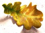 Autumn Oak Leaf - Watercolour painting by GeeMassamArt