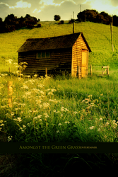 Amongst the Green Grass by Entertayner