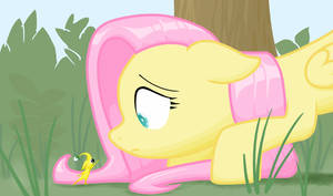 Fluttershy's Discovery