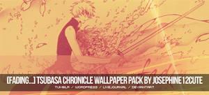 Tsubasa Chronicle Wallpaper Pack