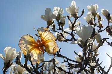 A flower? by Bogrolls