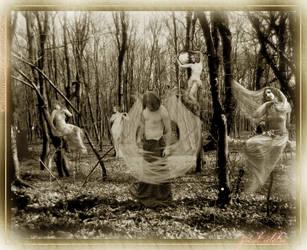 Jocul Ielelor by maddiecristea