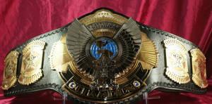 OVW World Heavyweight Title